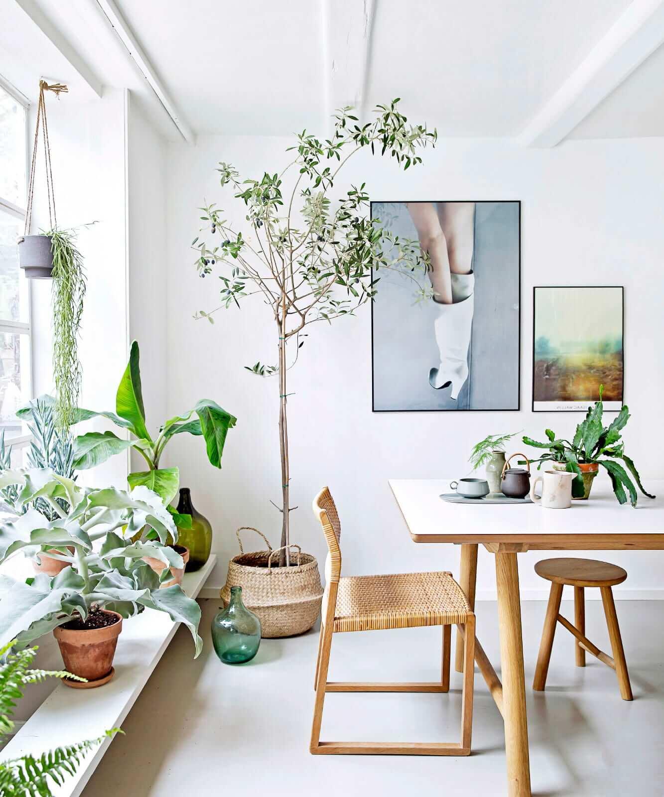 6 Tricks to Bring Nature Indoors With Biophilic Design - Moodfit on ecological design, media design, office design, boom gate design, water design, organic architecture design, principles of design, evidence-based design, landscape design, barrier design,